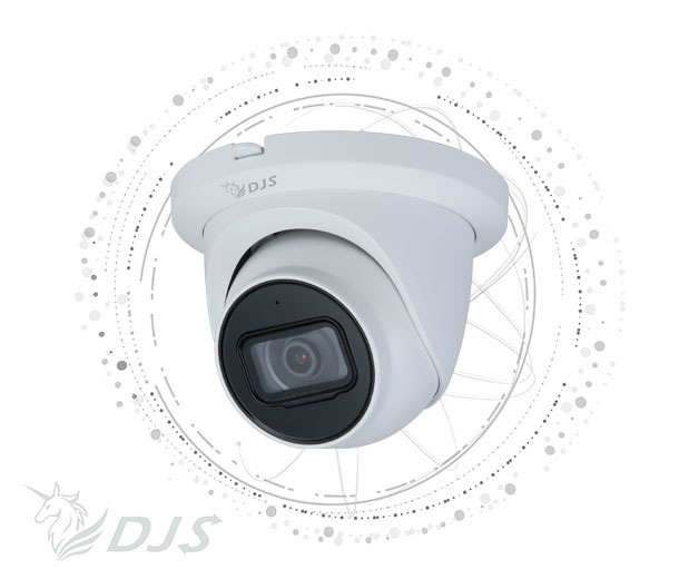 AI 2MP IR Eyeball Network Camera